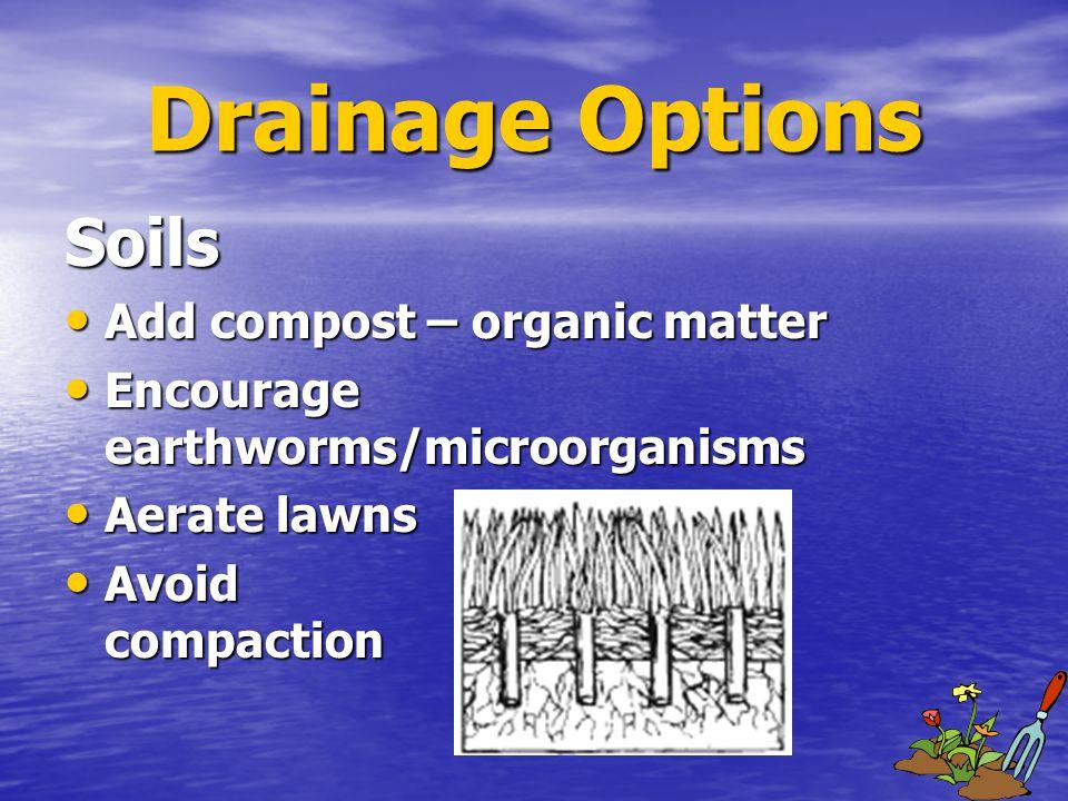Soils Add compost – organic matter Add compost – organic matter Encourage earthworms/microorganisms Encourage earthworms/microorganisms Aerate lawns Aerate lawns Avoid compaction Avoid compaction