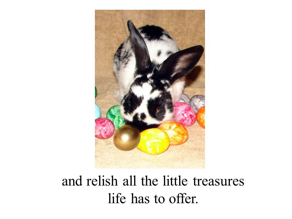 and relish all the little treasures life has to offer.
