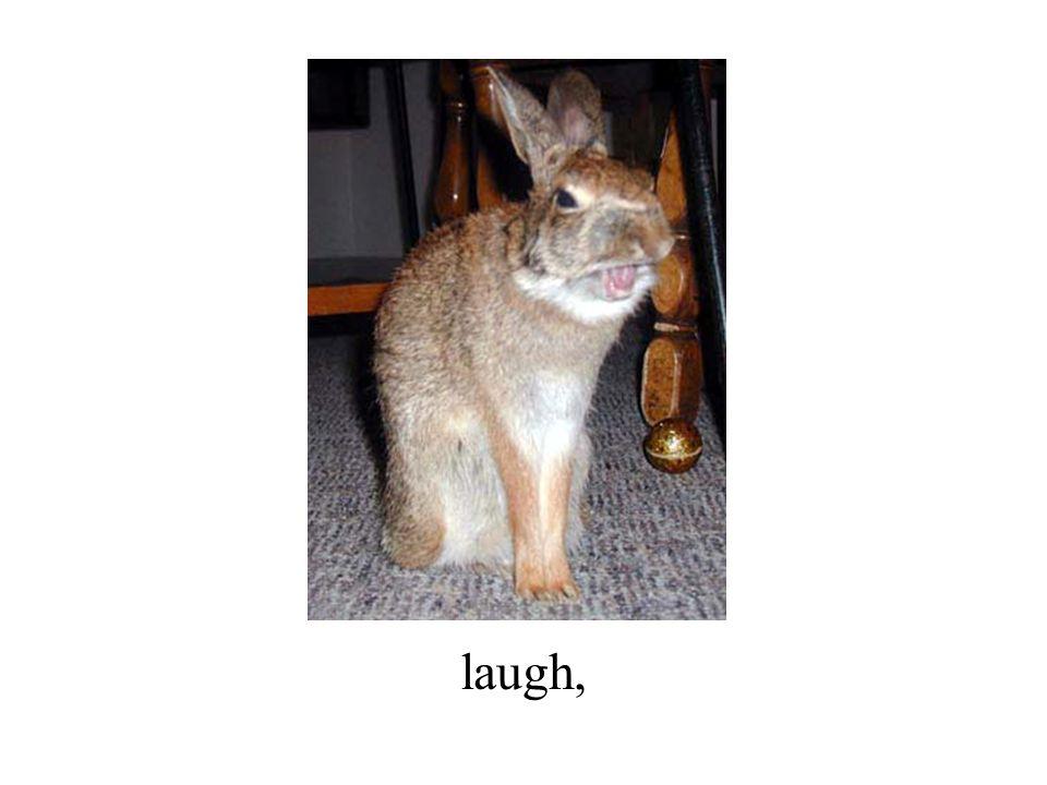 laugh,