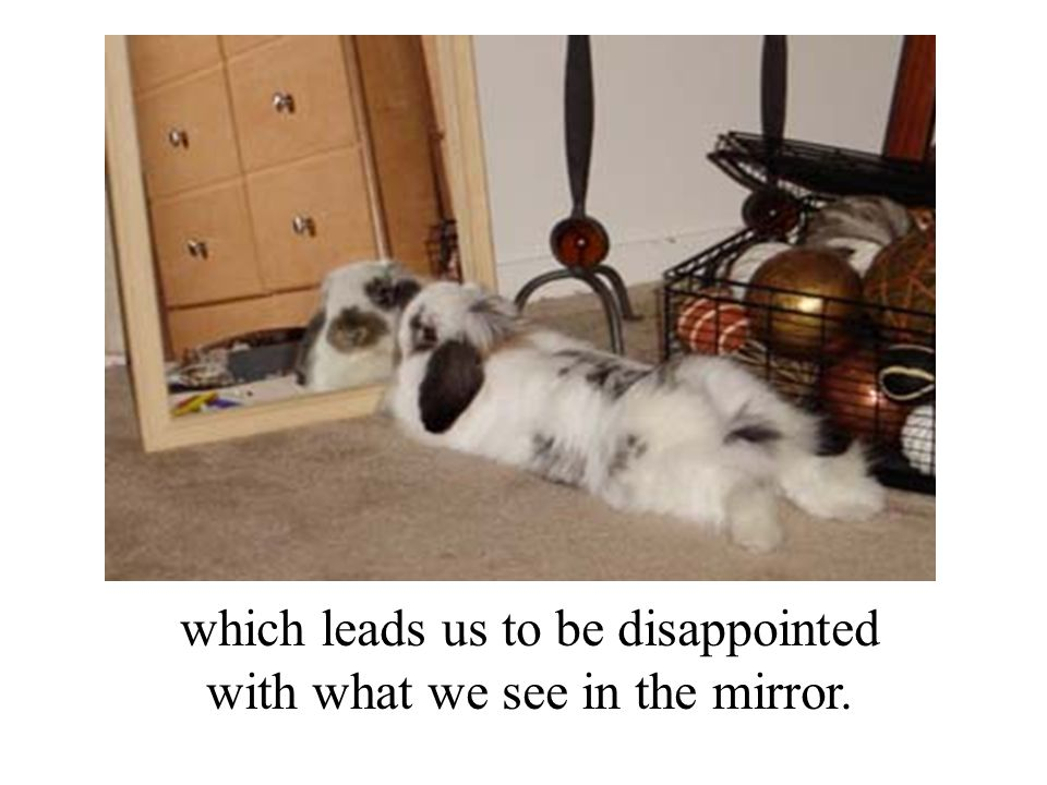 which leads us to be disappointed with what we see in the mirror.