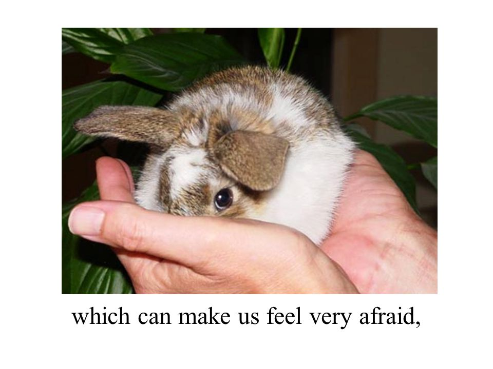 which can make us feel very afraid,