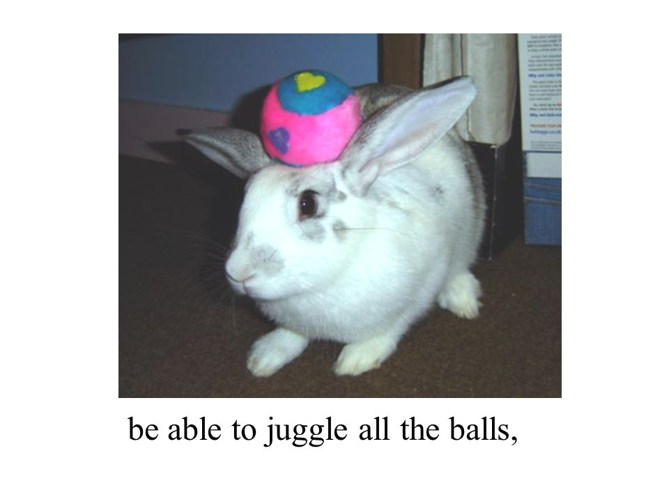 be able to juggle all the balls,