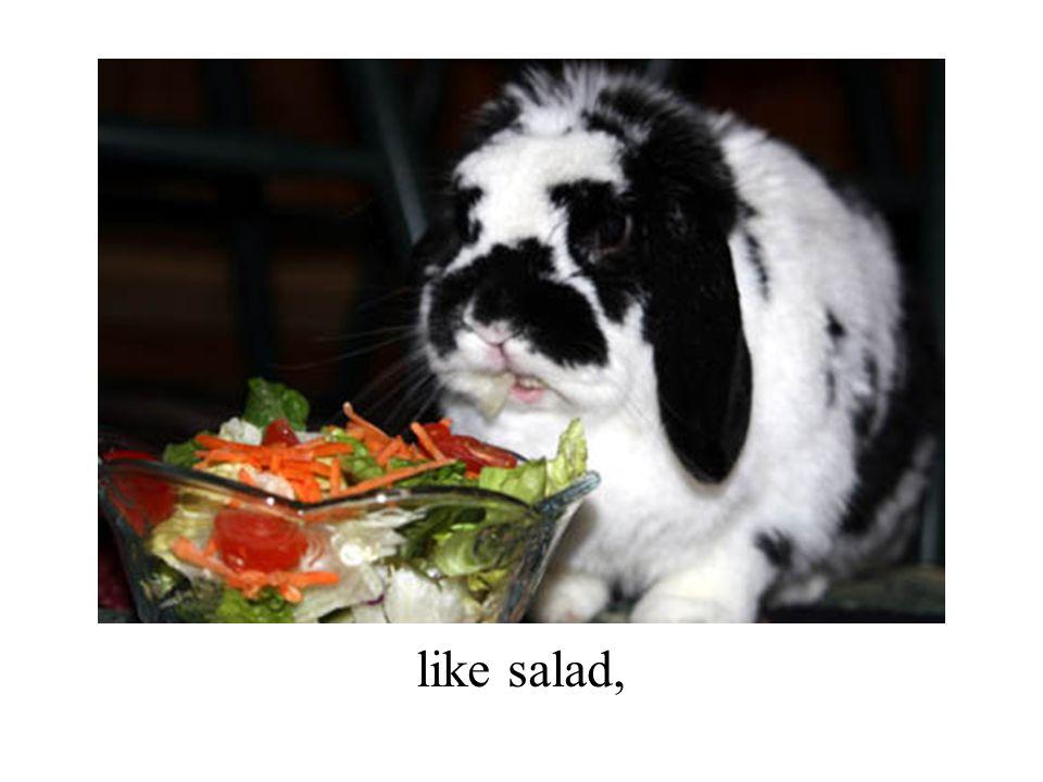 like salad,