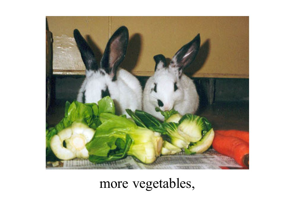more vegetables,