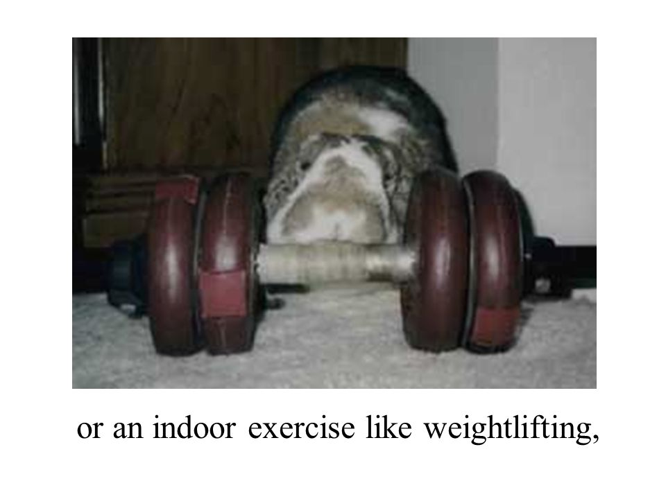 or an indoor exercise like weightlifting,