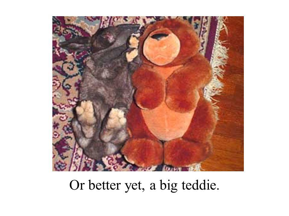 Or better yet, a big teddie.