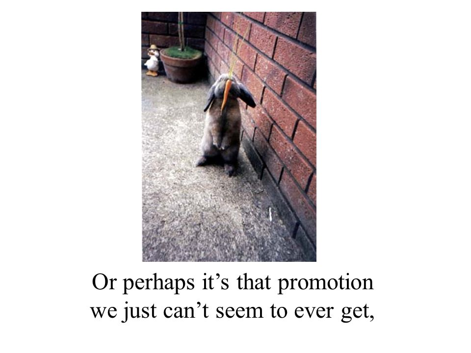 Or perhaps it's that promotion we just can't seem to ever get,