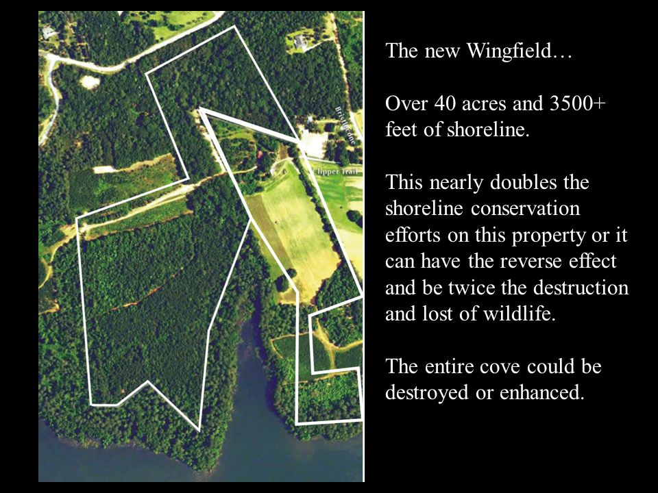 The new Wingfield… Over 40 acres and 3500+ feet of shoreline. This nearly doubles the shoreline conservation efforts on this property or it can have t