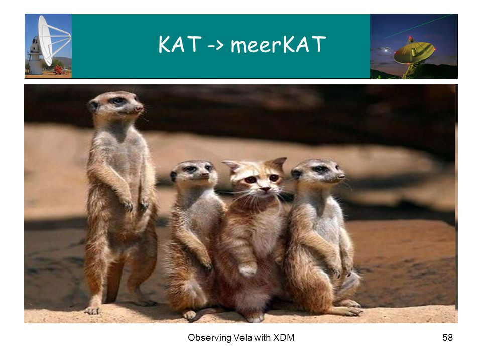 Observing Vela with XDM58 KAT -> meerKAT