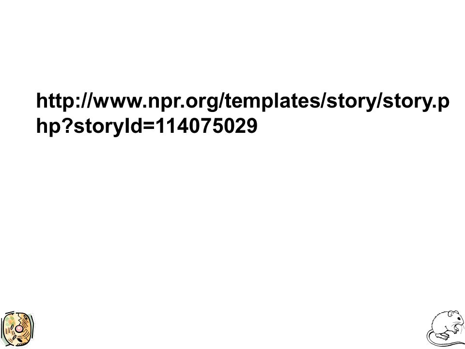 http://www.npr.org/templates/story/story.p hp?storyId=114075029