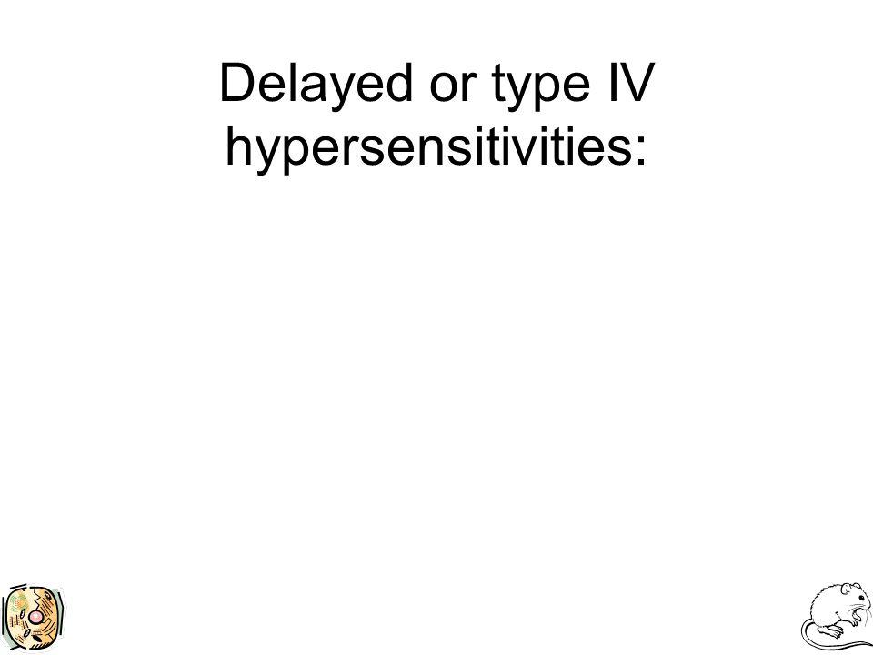 Delayed or type IV hypersensitivities: