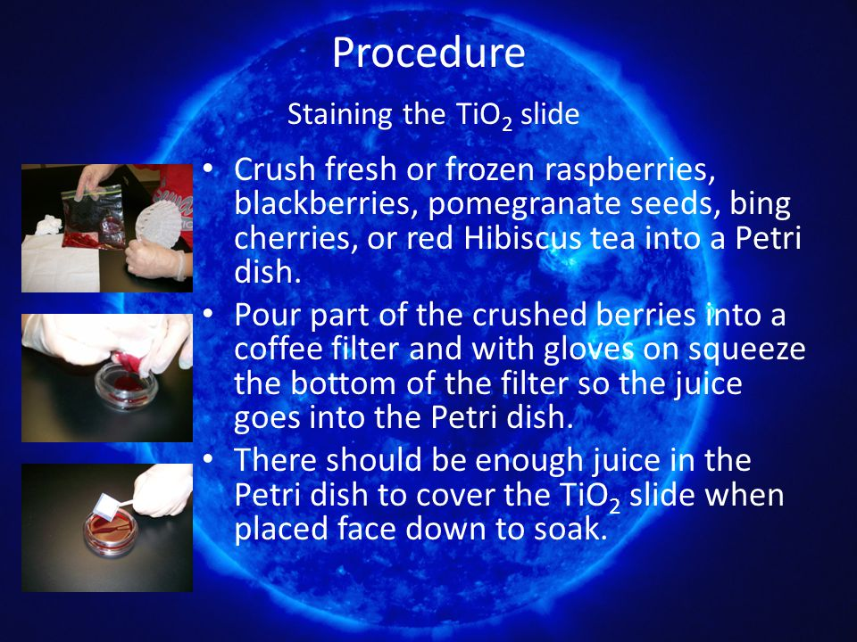 Procedure Staining the TiO 2 slide Crush fresh or frozen raspberries, blackberries, pomegranate seeds, bing cherries, or red Hibiscus tea into a Petri dish.