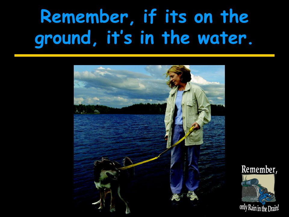 Remember, if its on the ground, it's in the water.