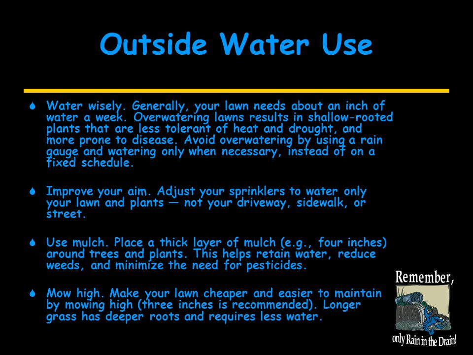 Outside Water Use  Water wisely. Generally, your lawn needs about an inch of water a week.