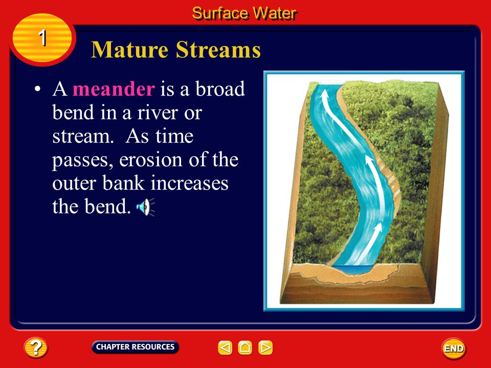 A mature stream flows more smoothly through its valley. Mature Streams Surface Water 1 1 A mature stream starts to erode more along its sides, and cur