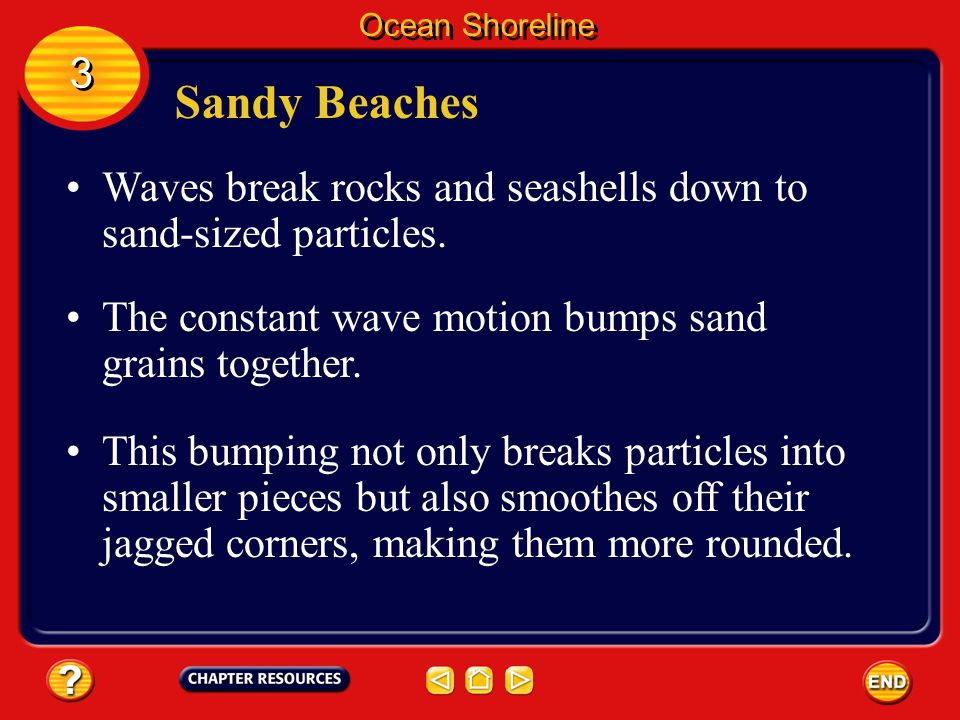 Sandy Beaches Beaches are deposits of sediment that are parallel to the shore. Beaches are made up of different materials. Ocean Shoreline 3 3 Some ar