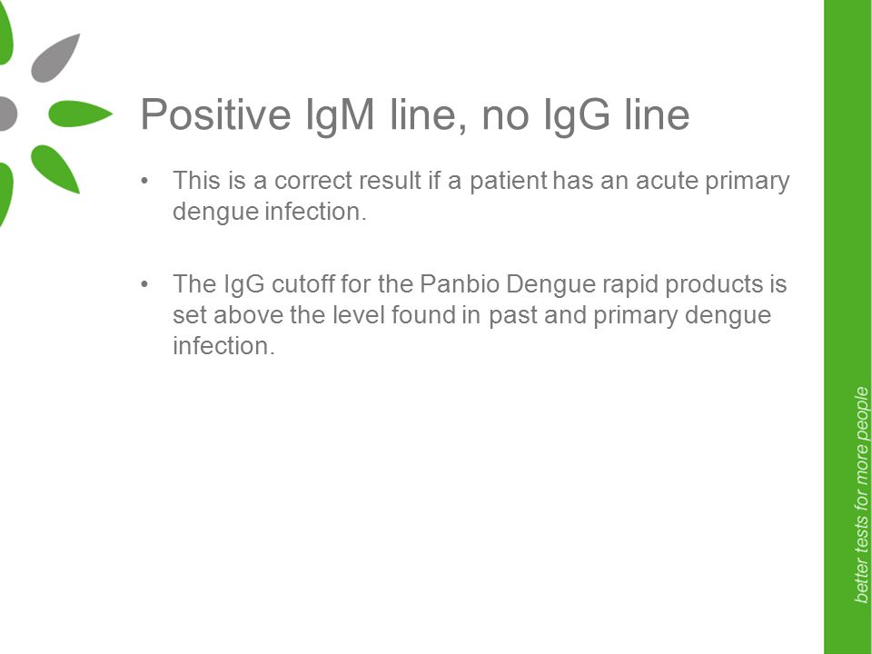 Positive IgM line, no IgG line This is a correct result if a patient has an acute primary dengue infection.