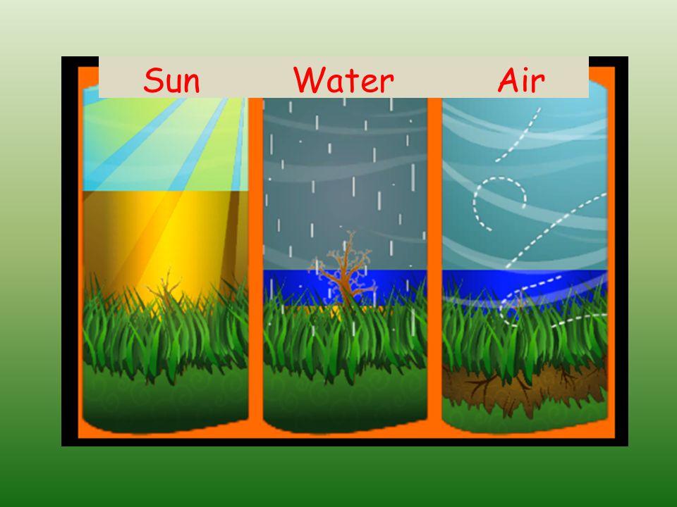 Sun Water Air