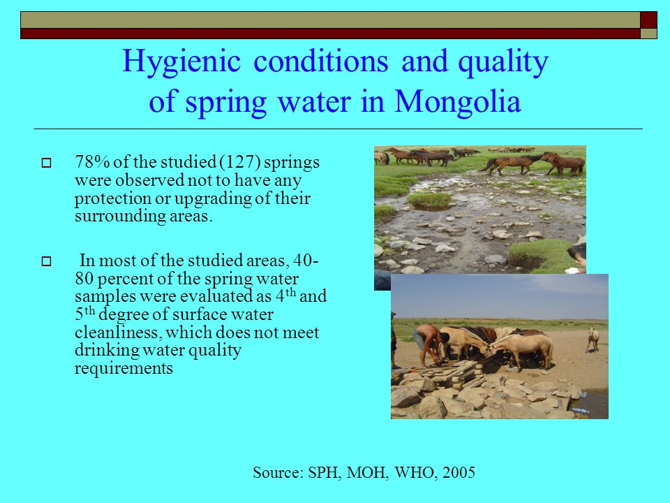 Hygienic conditions and quality of spring water in Mongolia  78% of the studied (127) springs were observed not to have any protection or upgrading of their surrounding areas.