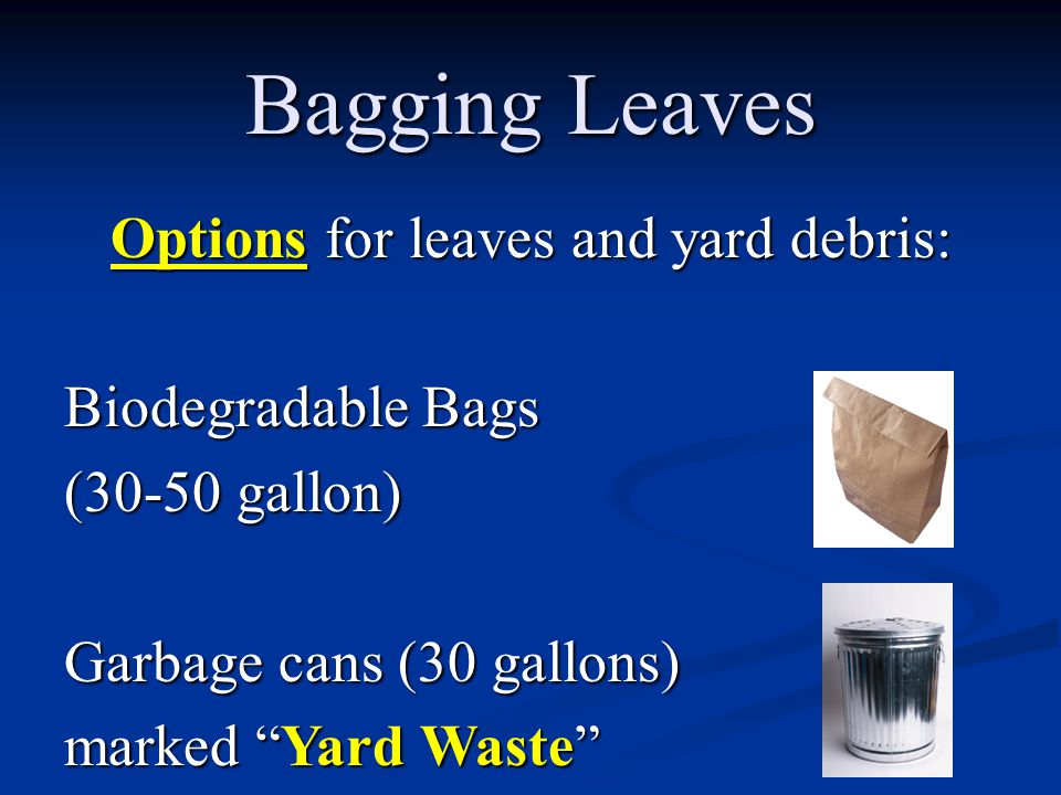 Options for leaves and yard debris: Biodegradable Bags (30-50 gallon) Garbage cans (30 gallons) marked Yard Waste Bagging Leaves