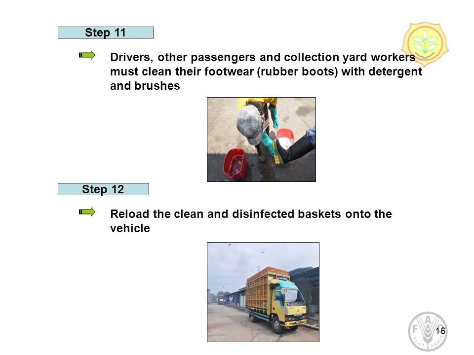 16 Step 11 Drivers, other passengers and collection yard workers must clean their footwear (rubber boots) with detergent and brushes Step 12 Reload the clean and disinfected baskets onto the vehicle