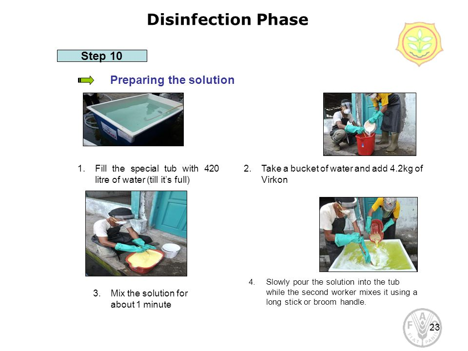 23 Disinfection Phase Preparing the solution Step 10 1.Fill the special tub with 420 litre of water (till it's full) 2.Take a bucket of water and add 4.2kg of Virkon 4.Slowly pour the solution into the tub while the second worker mixes it using a long stick or broom handle.