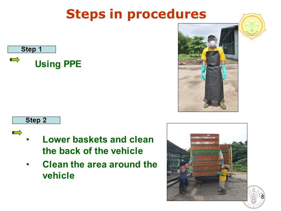 8 Steps in procedures Using PPE Step 1 Step 2 Lower baskets and clean the back of the vehicle Clean the area around the vehicle