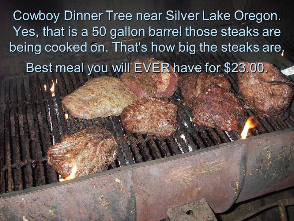 Cowboy Dinner Tree near Silver Lake Oregon. Yes, that is a 50 gallon barrel those steaks are being cooked on. That's how big the steaks are. Best meal