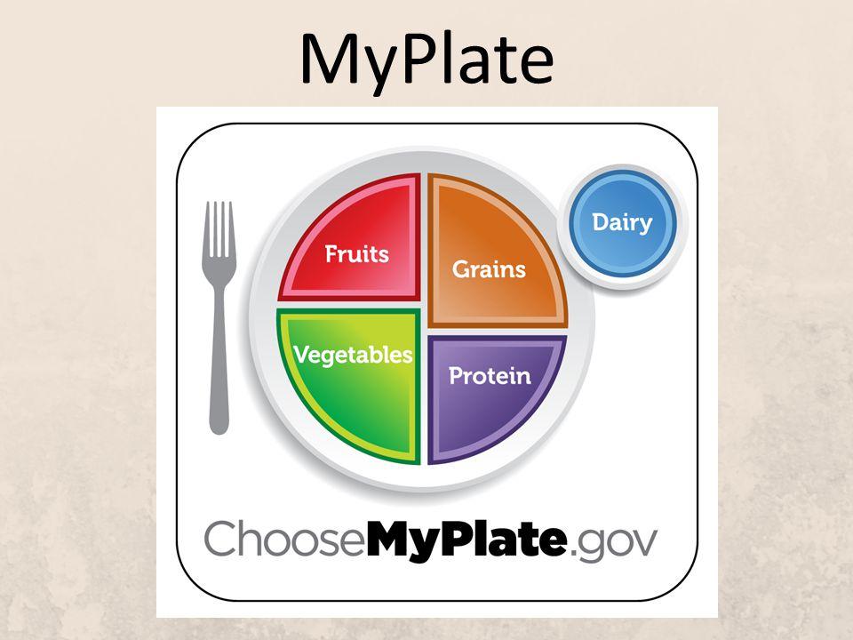 7 MyPlate