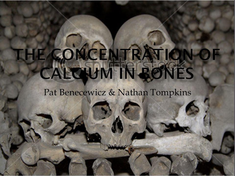 Pat Benecewicz & Nathan Tompkins