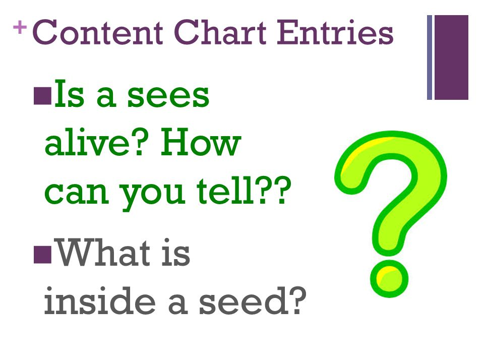 + Content Chart Entries Is a sees alive? How can you tell?? What is inside a seed?