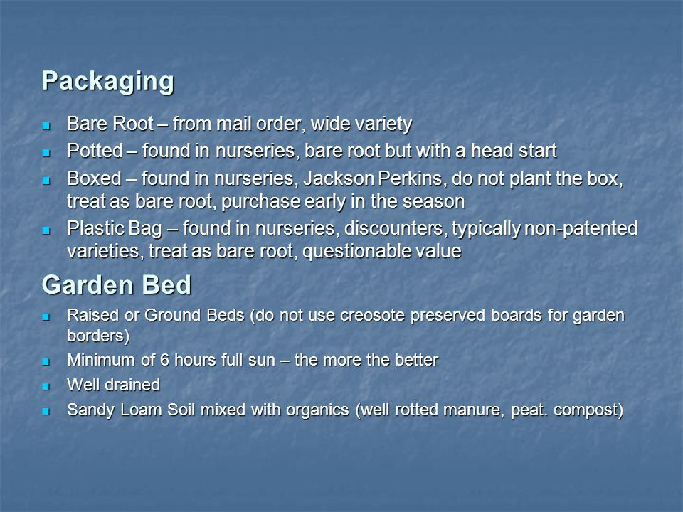 Packaging Bare Root – from mail order, wide variety Bare Root – from mail order, wide variety Potted – found in nurseries, bare root but with a head start Potted – found in nurseries, bare root but with a head start Boxed – found in nurseries, Jackson Perkins, do not plant the box, treat as bare root, purchase early in the season Boxed – found in nurseries, Jackson Perkins, do not plant the box, treat as bare root, purchase early in the season Plastic Bag – found in nurseries, discounters, typically non-patented varieties, treat as bare root, questionable value Plastic Bag – found in nurseries, discounters, typically non-patented varieties, treat as bare root, questionable value Garden Bed Raised or Ground Beds (do not use creosote preserved boards for garden borders) Raised or Ground Beds (do not use creosote preserved boards for garden borders) Minimum of 6 hours full sun – the more the better Minimum of 6 hours full sun – the more the better Well drained Well drained Sandy Loam Soil mixed with organics (well rotted manure, peat.