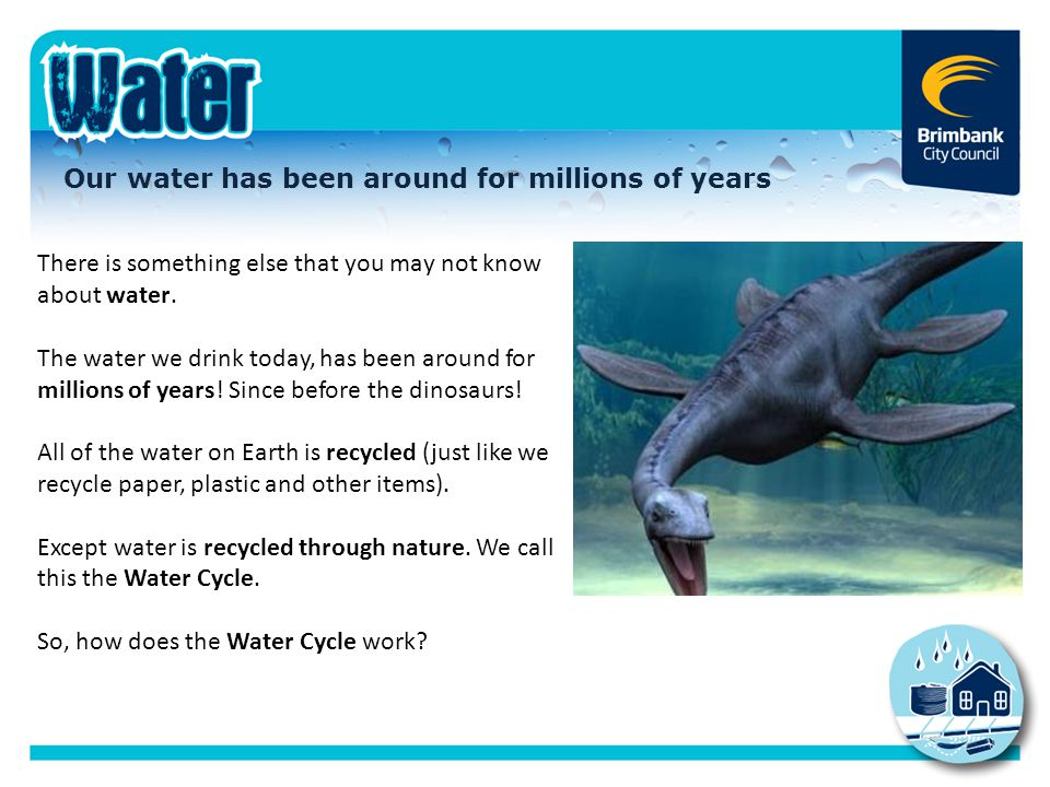 The Water Cycle The Water Cycle is the 'life cycle' of water.