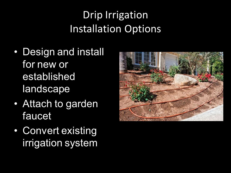 Drip Irrigation Installation Options Design and install for new or established landscape Attach to garden faucet Convert existing irrigation system