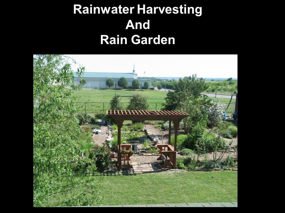 Rainwater Harvesting And Rain Garden