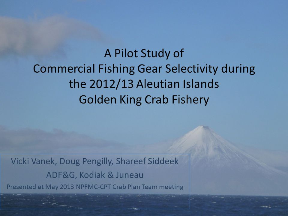 A Pilot Study of Commercial Fishing Gear Selectivity during the 2012/13 Aleutian Islands Golden King Crab Fishery Vicki Vanek, Doug Pengilly, Shareef Siddeek ADF&G, Kodiak & Juneau Presented at May 2013 NPFMC-CPT Crab Plan Team meeting 1
