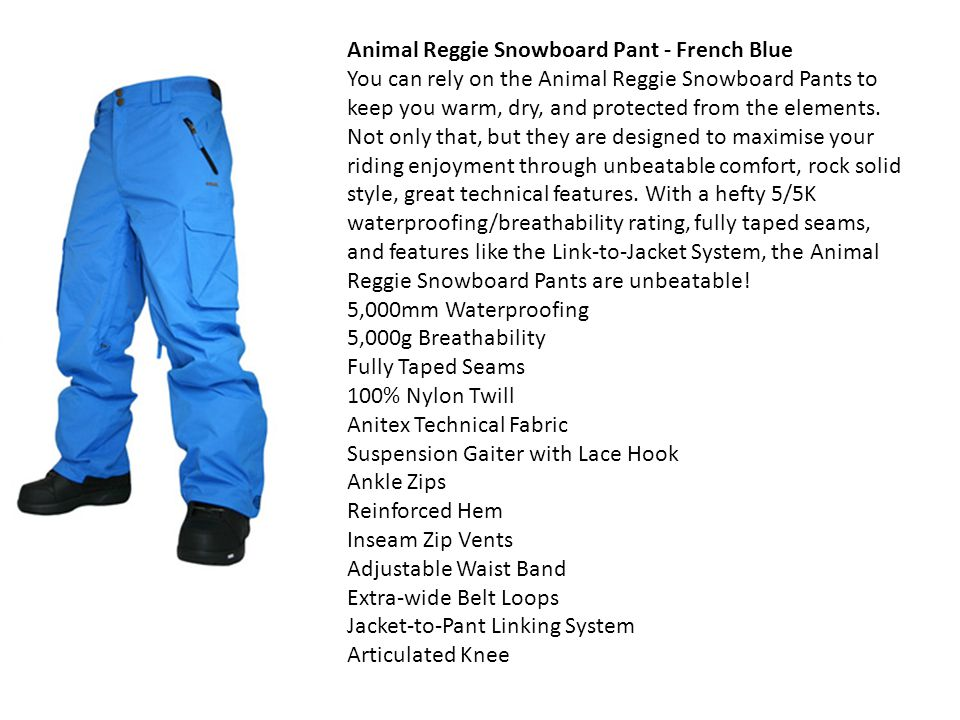Animal Reggie Snowboard Pant - French Blue You can rely on the Animal Reggie Snowboard Pants to keep you warm, dry, and protected from the elements.