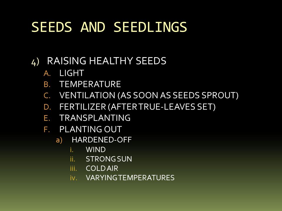 SEEDS AND SEEDLINGS 4) RAISING HEALTHY SEEDS A. LIGHT B.
