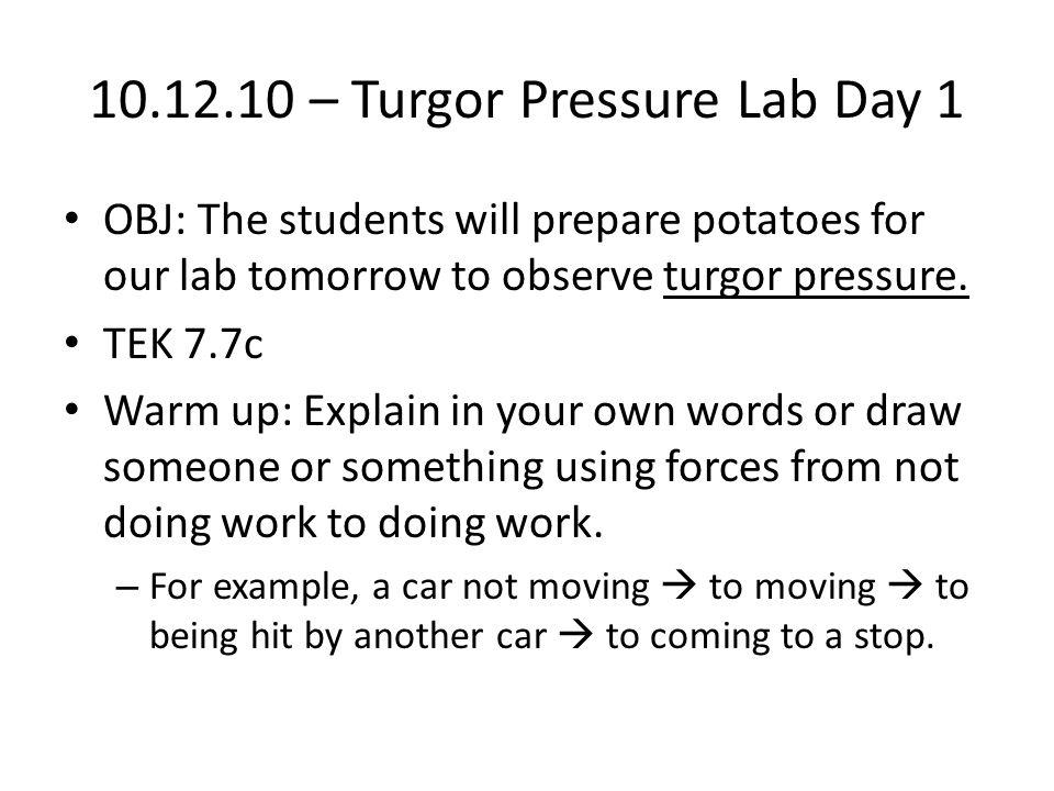 10.12.10 – Turgor Pressure Lab Day 1 OBJ: The students will prepare potatoes for our lab tomorrow to observe turgor pressure. TEK 7.7c Warm up: Explai
