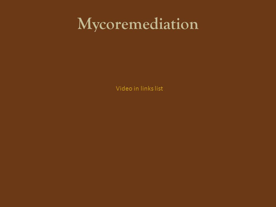 Mycoremediation Video in links list