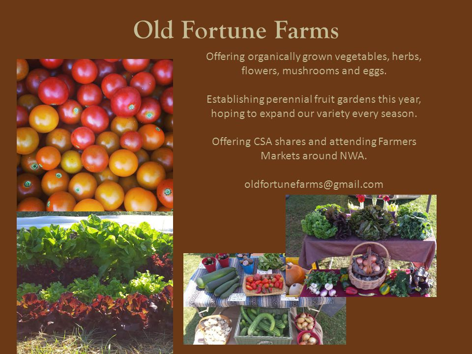 Old Fortune Farms Offering organically grown vegetables, herbs, flowers, mushrooms and eggs.