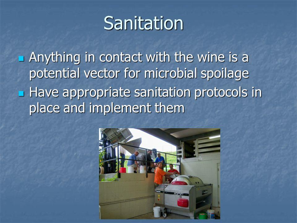 Cellar Hygiene Why.Why.