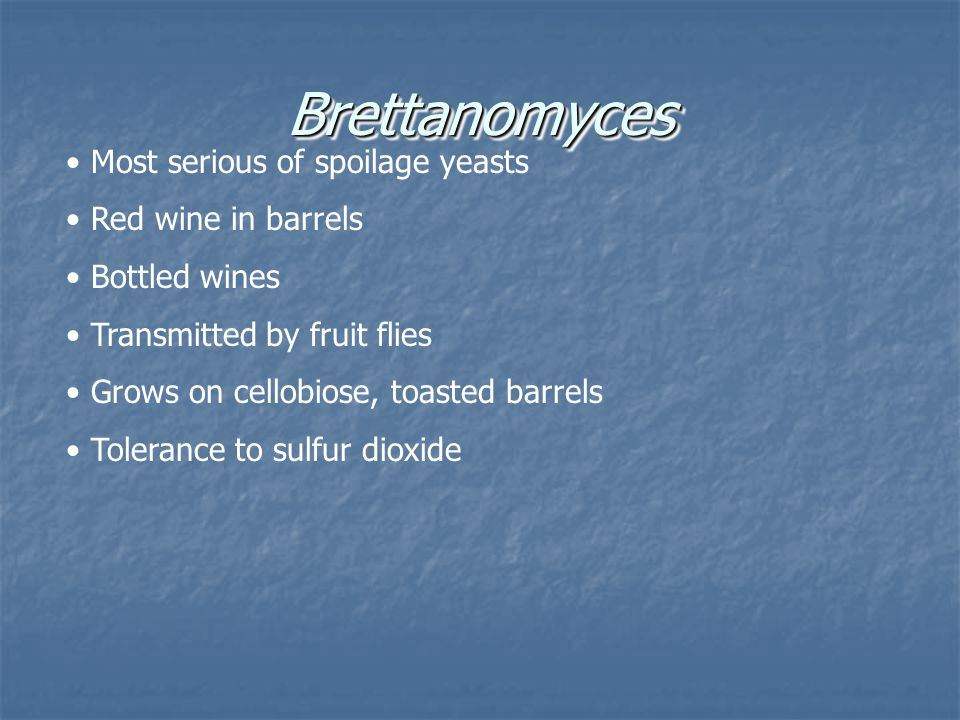 BrettanomycesBrettanomyces Most serious of spoilage yeasts Red wine in barrels Bottled wines Transmitted by fruit flies Grows on cellobiose, toasted b