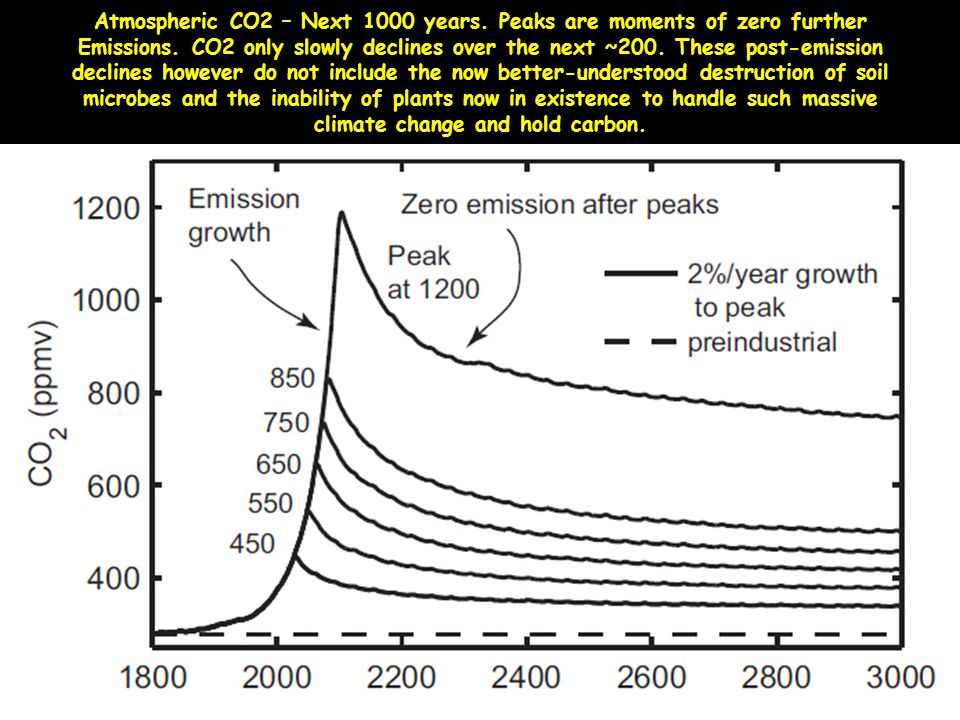 Atmospheric CO2 – Next 1000 years. Peaks are moments of zero further Emissions. CO2 only slowly declines over the next ~200. These post-emission decli