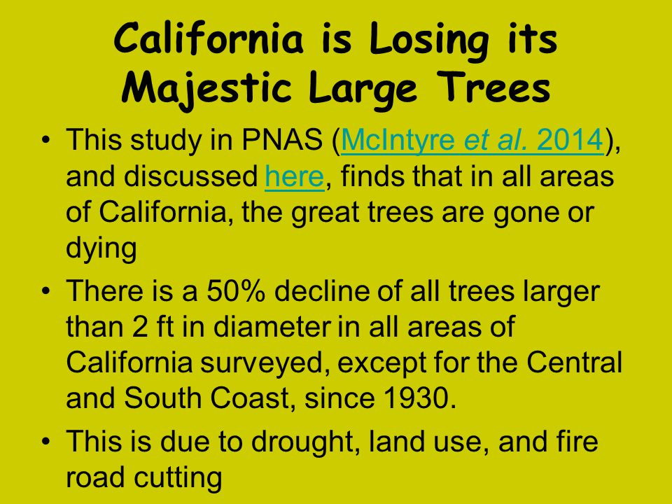 California is Losing its Majestic Large Trees This study in PNAS (McIntyre et al. 2014), and discussed here, finds that in all areas of California, th