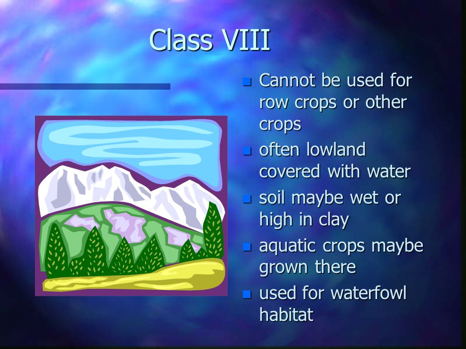 n Class n Class VI - Not suited for row crops –too –too much slope –usually –usually damaged by erosion with gullies –can –can be used for trees, wildlife habitat, and recreation n Class n Class VII - Highly unsuited for cultivation –has –has severe limitations –permanent –permanent pastures, forestry, wildlife –slope –slope is usually over 12 percent –large –large rock surfaces and boulders may be found –very –very little soil present