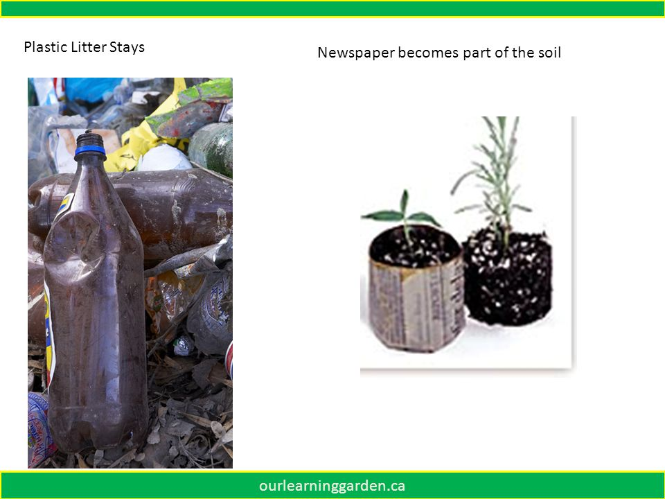 ourlearninggarden.ca Plastic Litter Stays Newspaper becomes part of the soil