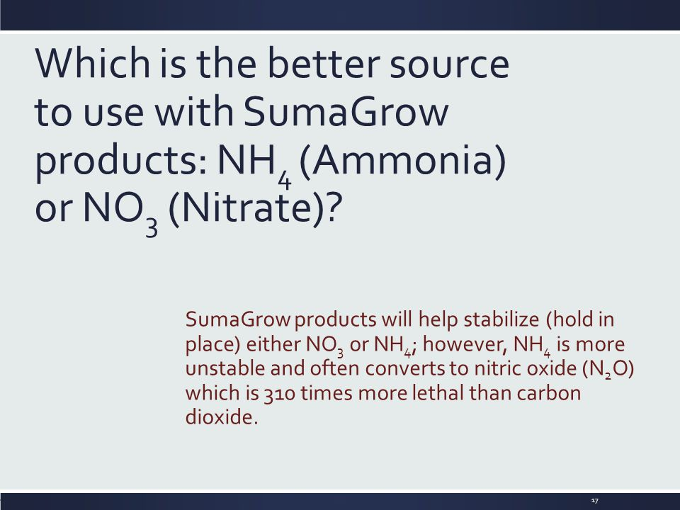 Which is the better source to use with SumaGrow products: NH 4 (Ammonia) or NO 3 (Nitrate)? SumaGrow products will help stabilize (hold in place) eith