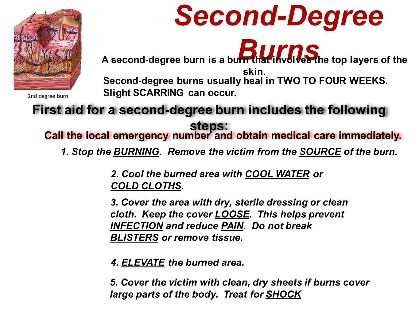 Second-Degree Burns A second-degree burn is a burn that involves the top layers of the skin. Second-degree burns usually heal in TWO TO FOUR WEEKS. Sl