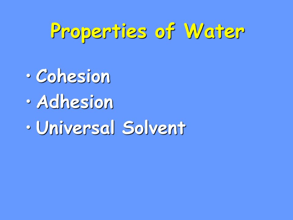 Properties of Water CohesionCohesion AdhesionAdhesion Universal SolventUniversal Solvent